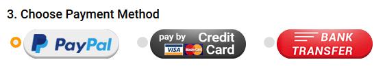 Sie sollten bei Chinavasion per PayPal bestellen