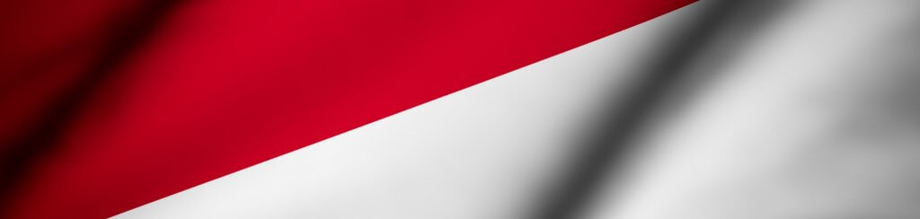 Steckdosen Indonesien