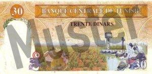 30 tunesische Dinar (Rückseite)